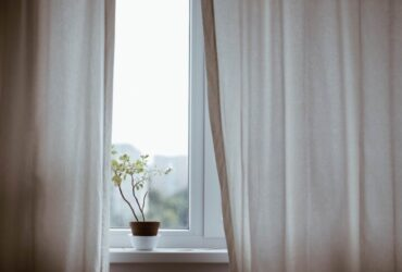 5 ways to improve the air quality at home