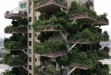Experimental green housing project takes a bad turn