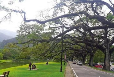 Taiping named 3rd most sustainable city in the world but…